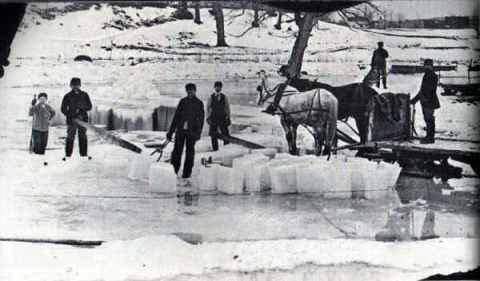 ice%20horses