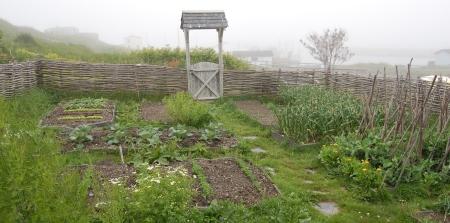 Historical Settler's Garden / Ferryland, Newfoundland and Labrador / Source: Gwen Tuinman