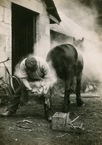 Blacksmith and horse